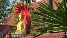 Buddha statue with snakes and plant,Vientiane,Laos Footage