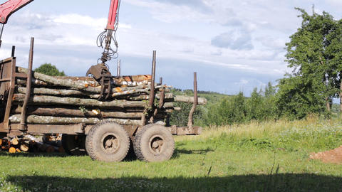 Unloading logs from the trailer using Live Action