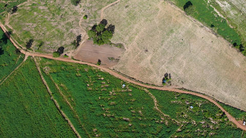 4K Drone shot aerial view scenic landscape of agriculture farm at countryside Live Action