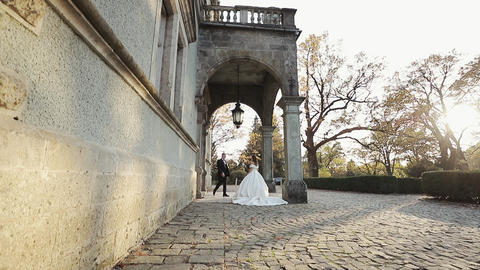 Wedding couple walking in the park with historic palace. Wedding dress. Green Footage