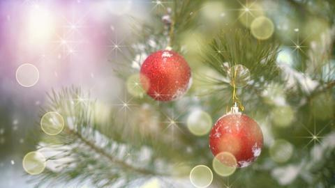Christmas decoration on tree and fairy snowfall seamless loop Footage