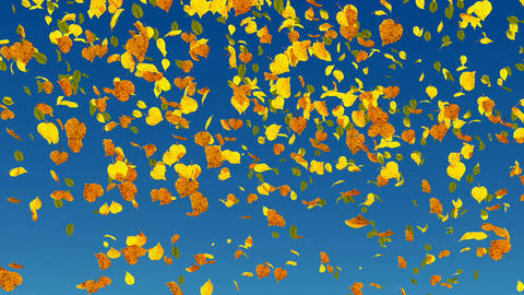Falling autumn leaves slow-motion Animation