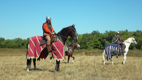 medieval cavalry during historical festival ビデオ