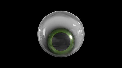 Realistic eye animation Animation