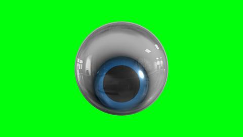 Realistic eye animation Animation