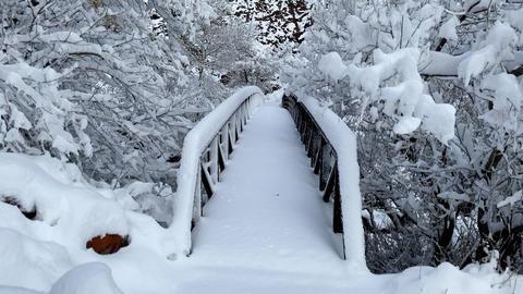 Fresh snow covers the landscape near Boulder Colorado Archivo