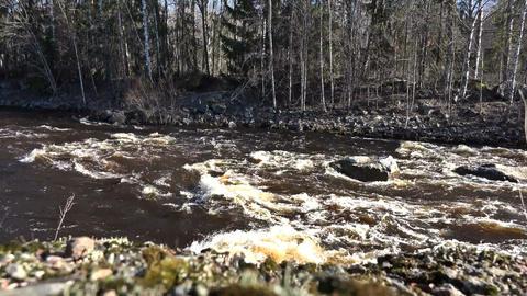 Autumn Turbulent Rivers Footage