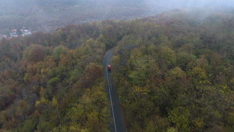 Red bus driving on misty road in the forest. Drone following truck at forest ビデオ