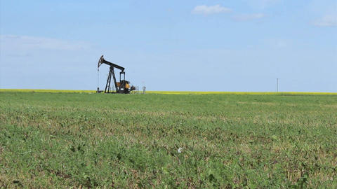 Oil Pump On The Prairies Footage