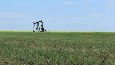 Oil Pump On The Prairies Stock Video Footage