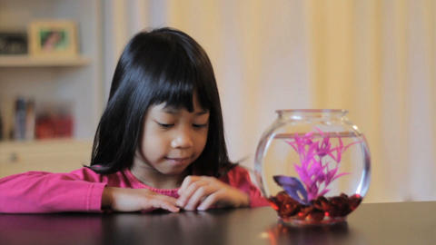 Proud Girl Feeds Her Betta Fish Stock Video Footage