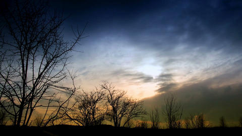 time lapse clouds and silhouettes of trees Footage