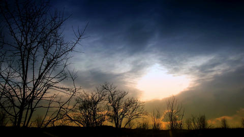 time lapse clouds and silhouettes of trees Stock Video Footage