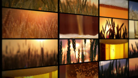crops of barley and fresh beer - montage Stock Video Footage