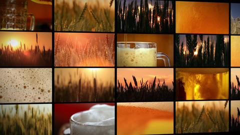 crops of barley and fresh beer - montage Footage