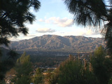 Ponderosa Pine trees frame the San Gabriel Mountains and San Fernando Valley in California Footage