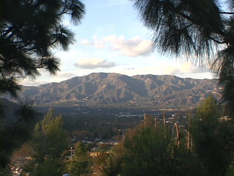 Ponderosa Pine trees frame the San Gabriel Mountains and... Stock Video Footage