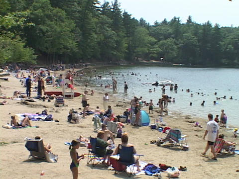 People walk around Walden ponds beach Stock Video Footage
