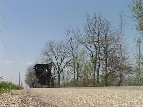 An Amish horse cart passes on a country road Footage
