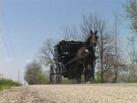 An Amish horse cart passes on a country road Stock Video Footage