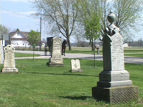 An Amish horse carriage passes a cemetery Footage