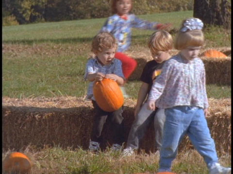 Children sit on hay bales in a pumpkin patch Live Action