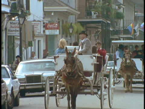 Horse drawn carriages drive through the French Quarter of... Stock Video Footage