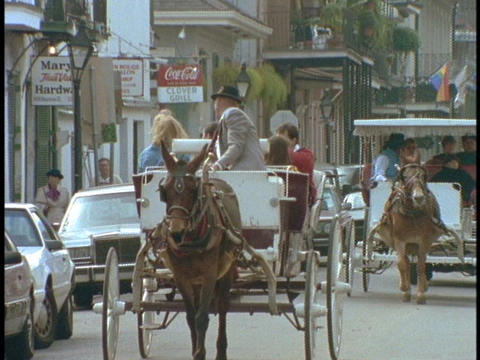 Horse drawn carriages drive through the French Quarter of New Orleans Footage