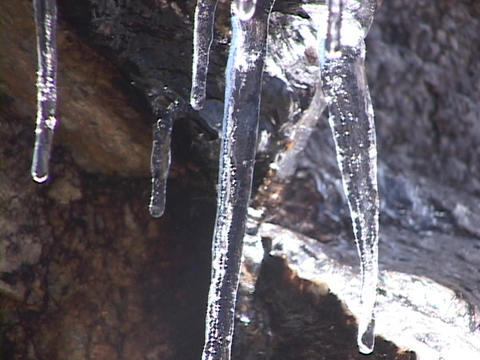 Water drips from icicles Stock Video Footage