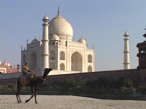 A camel and rider pass by the Taj Mahal Stock Video Footage