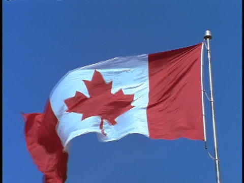 The Canadian flag blows in the breeze Stock Video Footage