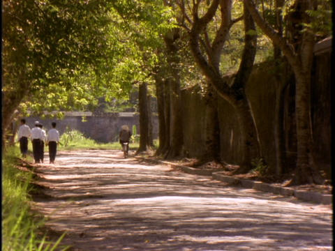 A group of boys walk along a tree-lined street in Hue,... Stock Video Footage