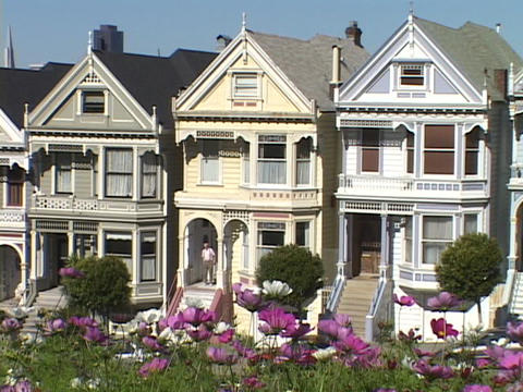 Flowers wave in the breeze near a row of Victorian style houses in San Francisco, California Footage