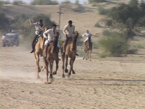 Camels race at the camel festival in India Stock Video Footage