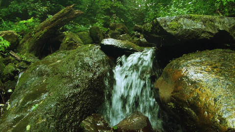 Water stream in mountain forest (live camera) Footage