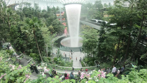 Inside the Singapore Changi Airport where people come and go Live Action
