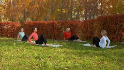 Female group training stretching exercise on yoga carpet in autumn park. Fitness GIF