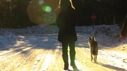 Two women walking a husky dog in winter Footage