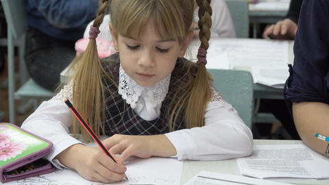 Portrait of a girl with pigtails in the classroom Archivo