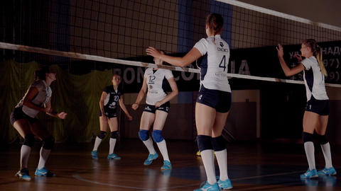 Young professional volleyball players are training in the gym, playing, 4k Live Action