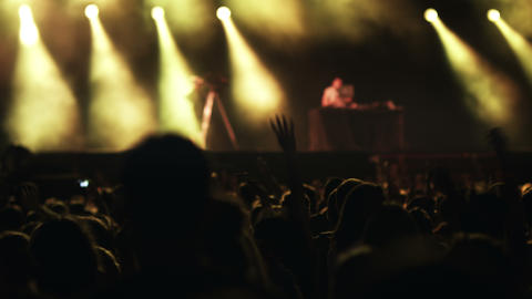 People on a concert Stock Video Footage