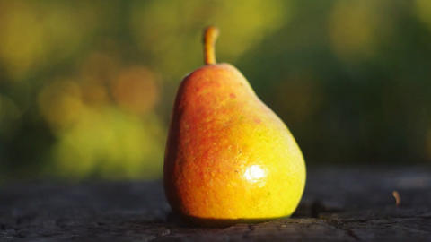 Bright and juicy pear on a tree stump Footage