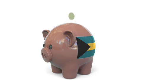 Putting money into piggy bank with flag of Bahamas. Tax system system or savings Live Action