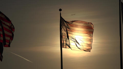 American Flags at Dusk or Dawn Live Action