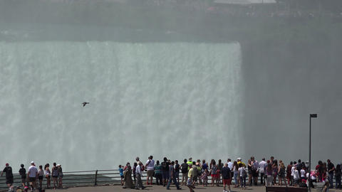 Tourists Viewing Water Falls Live Action