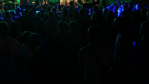 Party People At A Concert Footage