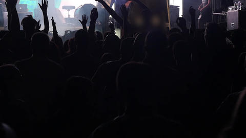 Crowd At A Music Concert Footage