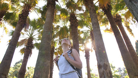 Woman enjoying of palm trees Footage