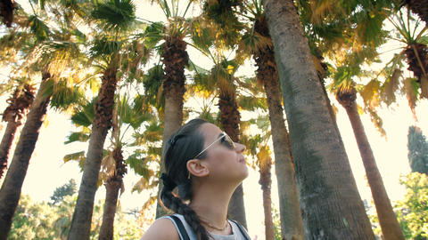 Woman looking at palm trees Footage