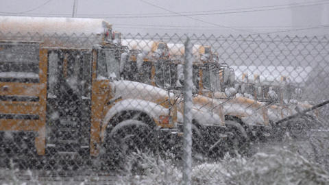 School Buses During Snow Storm Footage